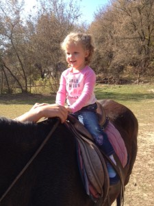 Abbey sat on her first horse today - it lasted only a few seconds before she decided it was a bit too scary.