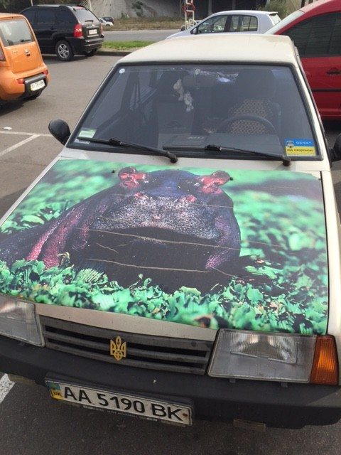 Someone likes Hippos.